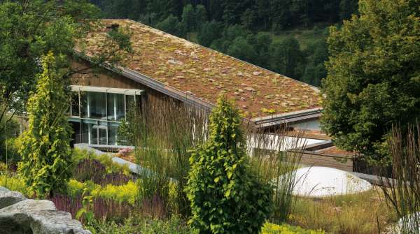 Traube Tonbach Green Roofs 8