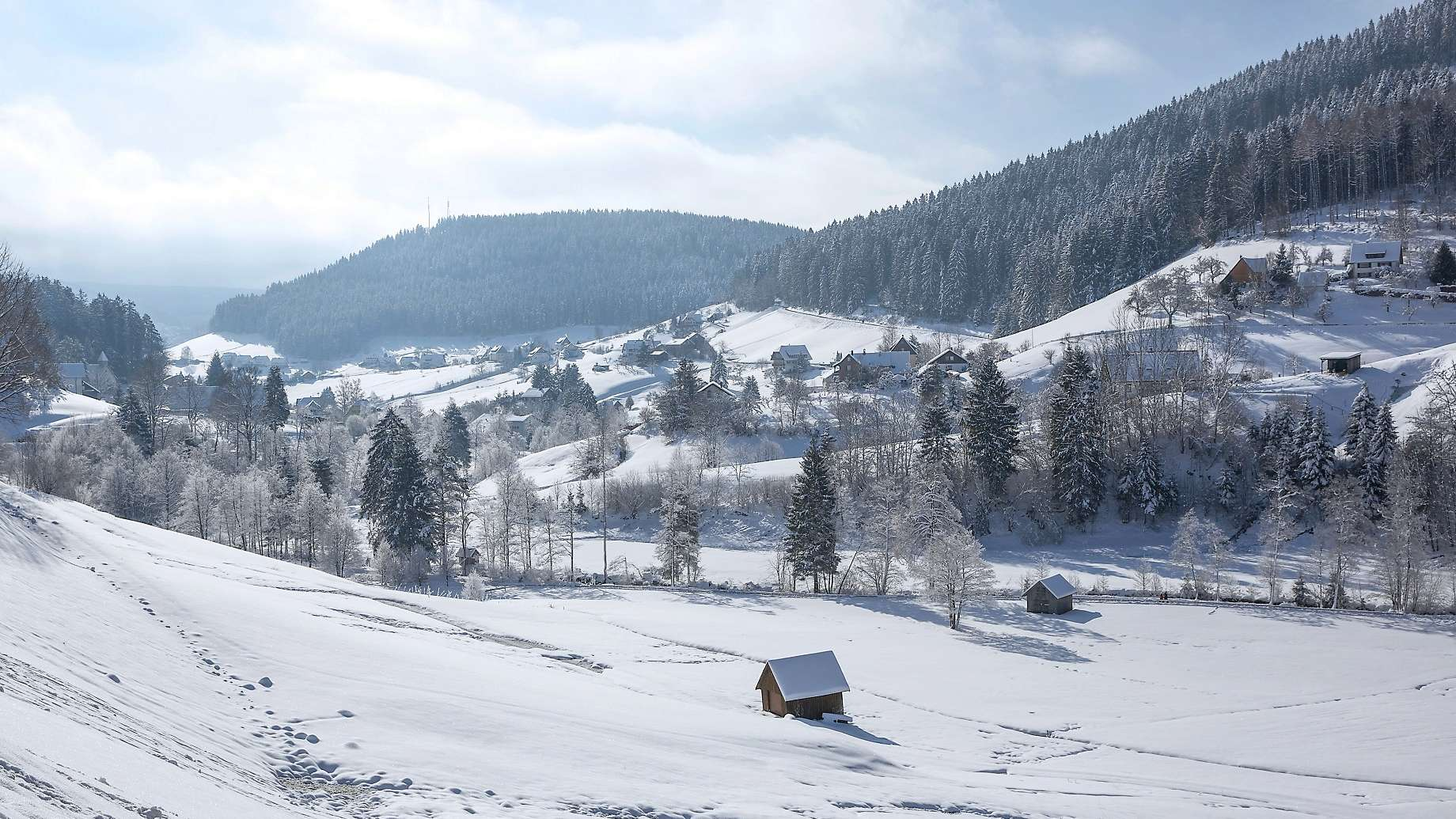 Traube Tonbach Winter
